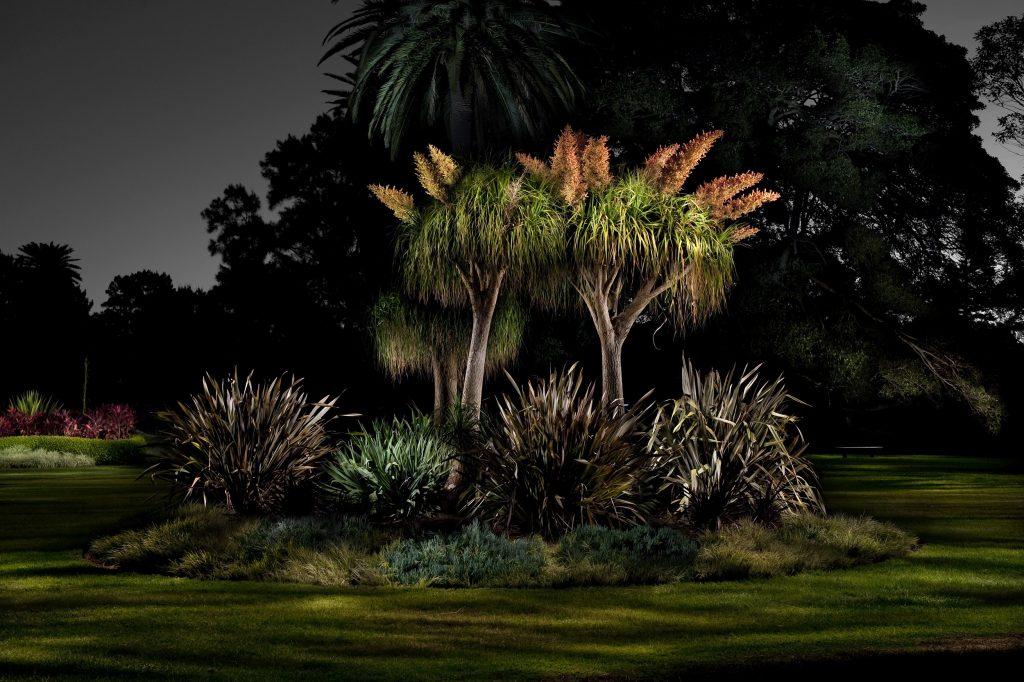 Night Garden, Centennial Park 2011